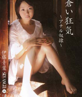 伊藤青葉主演のスカイエンジェル Vol.76をBDビデオでダウンロード