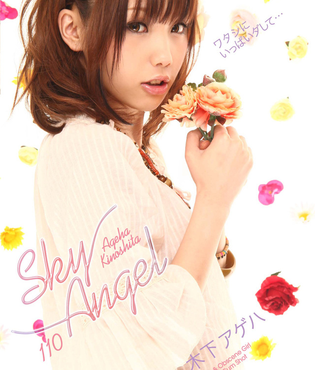 Sky Angel Vol 110 DVD