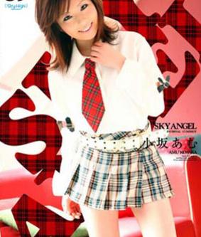 Sky Angel Vol 89 DVD