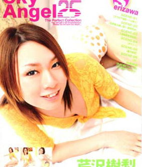 Sky Angel Vol 25 DVD