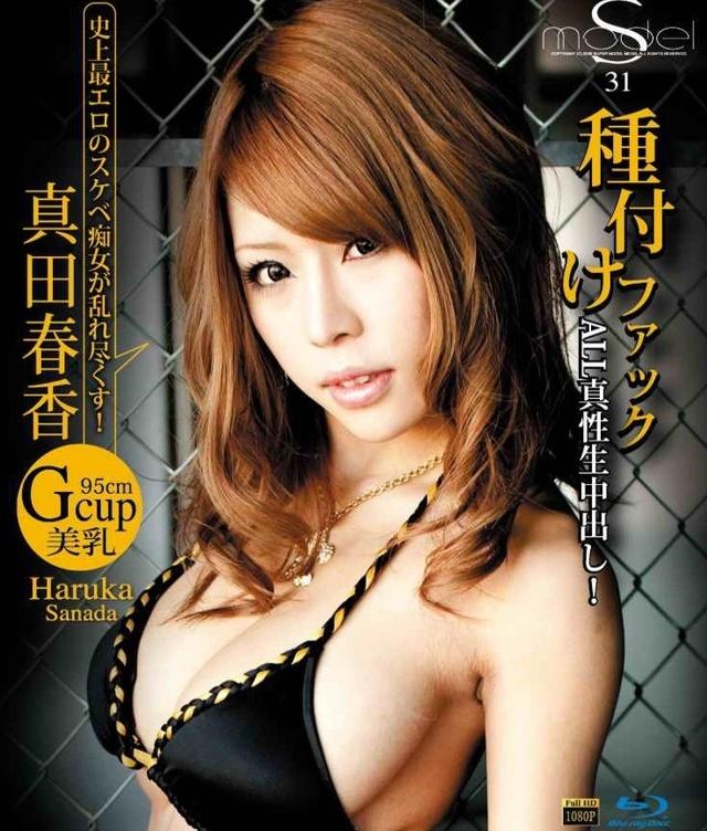S Model 31 DVD