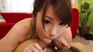 Lovely Asian blow job along beautiful Runa Ayase
