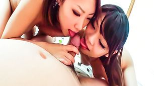 Akubi and Asami take turns giving an asian blowjob