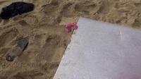 S Model 60 ~海の娼婦挑発ボディ~ : 遥めぐみ (ブルーレイディスク版) - ビデオシーン 3, Picture 102